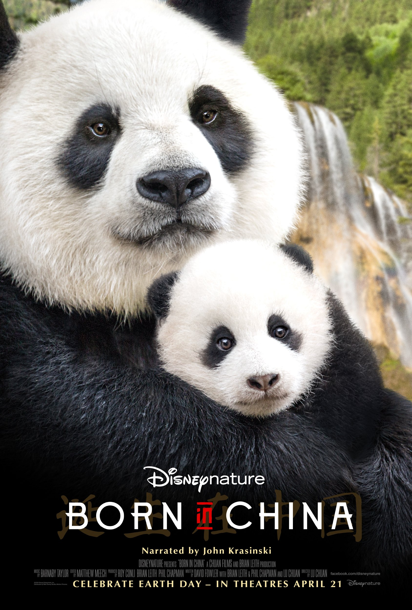 John Krasinski Joins Disneynature's BORN IN CHINA!